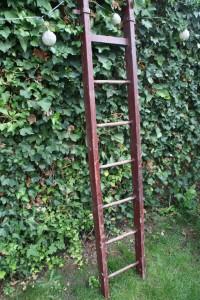 ancienne échelle en bois Garden