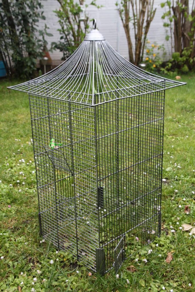 cage à oiseaux vintage Rouge Garden