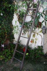 grande échelle en bois vintage Rouge Garden
