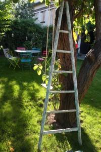 échelle bois Rouge Garden